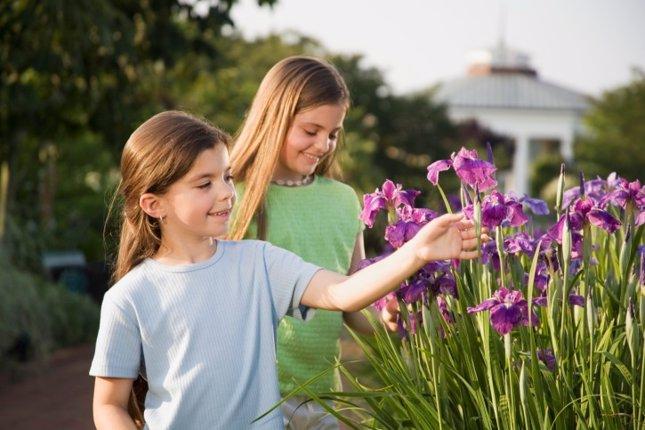Flores, Jardín Botánico, Primavera, niñas, Jardín. Actividades en familia