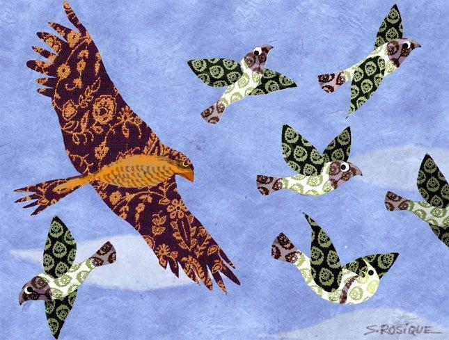 Las palomas y el gavilán