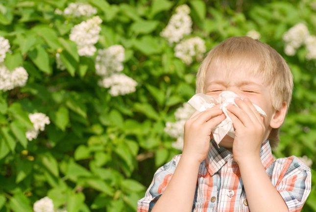Aumentan los casos de alergia en niños pequeños