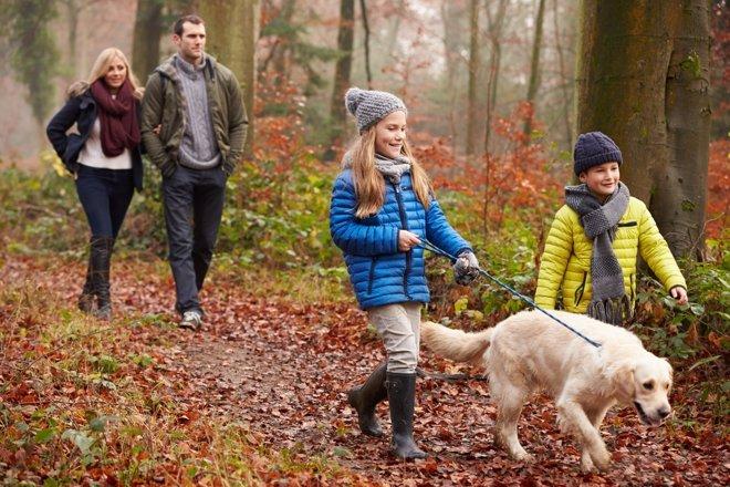 Caminar es una actividad muy recomendable para la salud