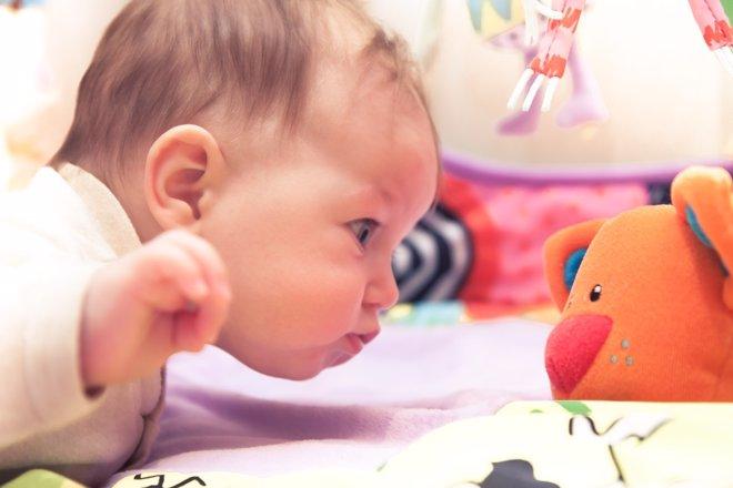 Bebés: plasticidad cerebral