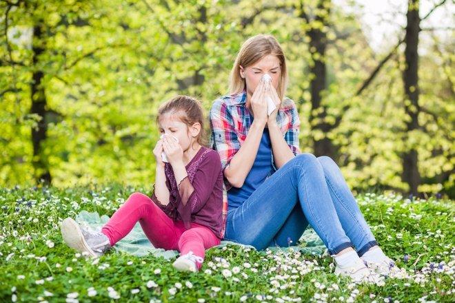El 20 por ciento de los niños padece alergia
